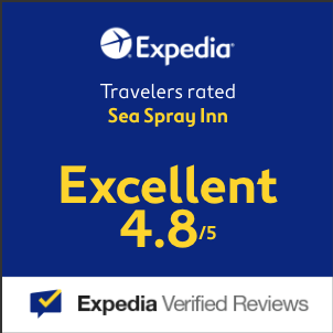 Sea Spray Inn, Lauderdale-by-the-Sea, Florida, Hotel Steps to Beach, Ocean, Sunny, Warm, Perfect Vacation